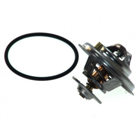 Termostat cieczy AUDI A4 A6 V8 A8 80 100 078121113